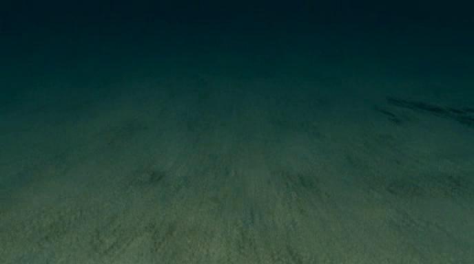 02 The Deep